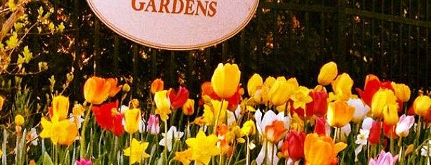 Allen Centennial Gardens is one of Fresh Air Around Madison, WI.