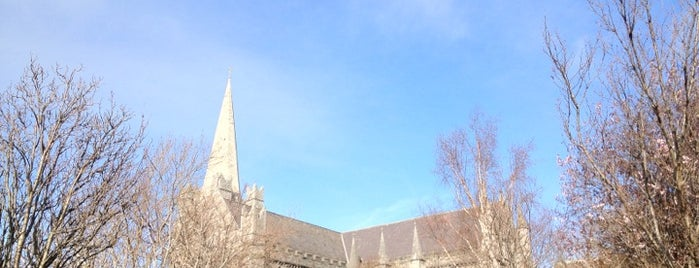 St Patrick's Cathedral | Ard-Eaglais Naomh Pádraig is one of Dublin Tourist Guide.
