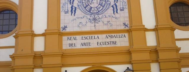 Real Escuela Andaluza Del Arte Ecuestre is one of 101 cosas que ver en Andalucía antes de morir.