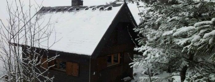 Fidelenhütte is one of Skigebiete.