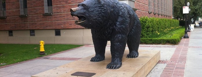 UCLA Bruin Statue is one of tmp.