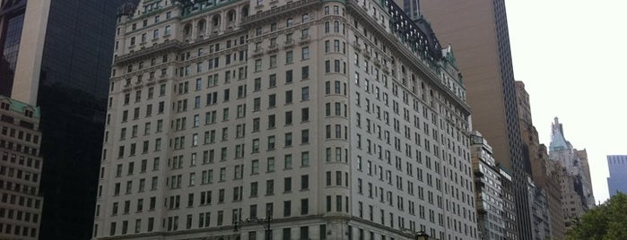 The Plaza Hotel is one of New York City's Must-See Attractions.