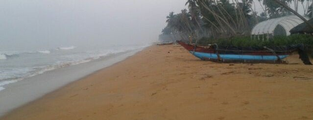 Wadduwa Beach is one of Trips / Sri Lanka.