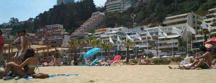 Sector 5 - Playa Reñaca is one of Work.