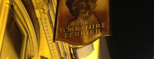 The Yorkshire Terrier is one of York's Best Drinking Holes.