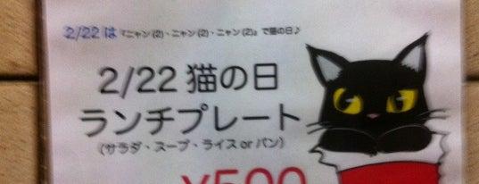 Cafe Stivalato Gattino is one of 大久保周辺ランチマップ.