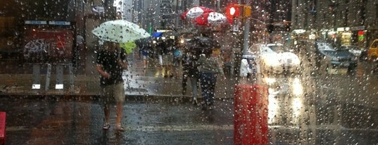 Rainpocalypse NYC is one of End of the World (NYC Edition).