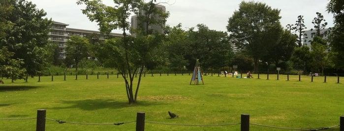 中目黒公園 is one of Nakameguro.