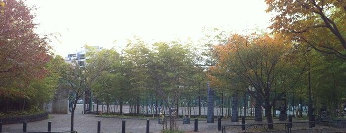 みなみもと町公園 is one of 公園.