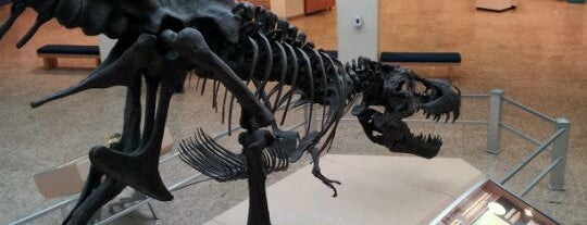 New Mexico Museum of Natural History & Science is one of 75 Geeky Places to Take Your Kids.