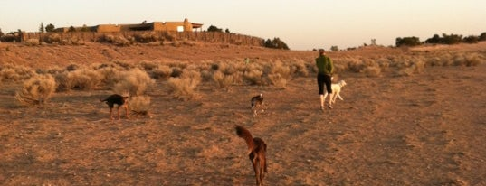 Frank S. Ortiz Dog Park is one of Chilling Spots.