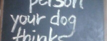 Lost Dog Cafe is one of Jason & NYE.