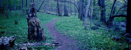 Tohickon Valley Park is one of Best Hikes in Pennsylvania.