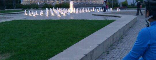 Queen Elizabeth Park is one of Vancouver/ Canadá.