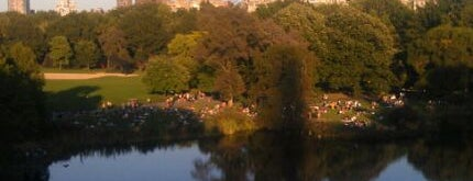 Central Park is one of New York City's Must-See Attractions.