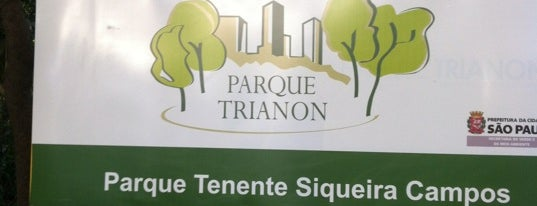 Parque Tenente Siqueira Campos (Trianon) is one of Best places in São Paulo, Brasil.