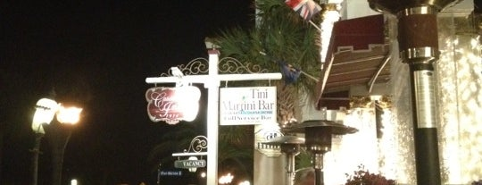 The Tini Martini Bar is one of St. Augustine Tourist Spots to See.