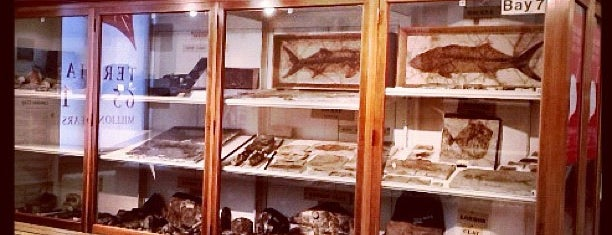 Sedgwick Museum of Earth Sciences is one of Inspired locations of learning.