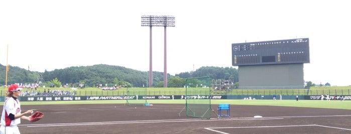 岩手県営野球場 is one of 読売巨人軍.