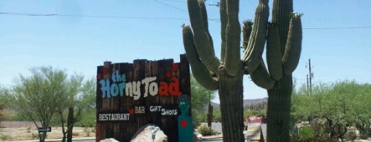 "Horny Toad is one of Featured on PBS' ""Check, Please! Arizona""."