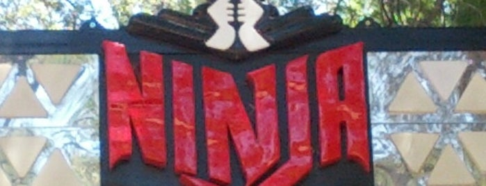 Ninja is one of ROLLER COASTERS.
