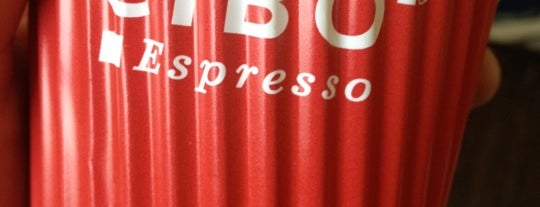 CIBO Espresso is one of Disaster Love Tour.