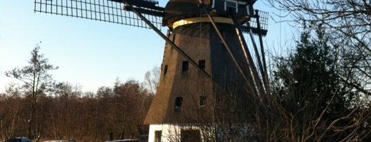Molen De Zwarte Ruiter is one of Dutch Mills - North 1/2.