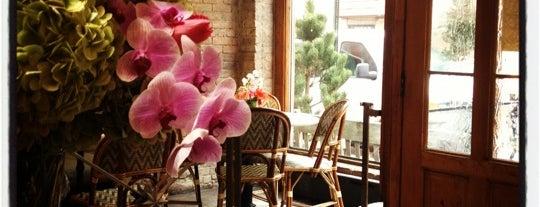 Zé Café is one of test.