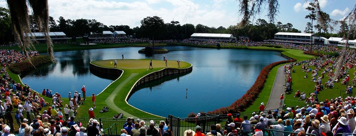 TPC Sawgrass is one of Living the Salt Life.