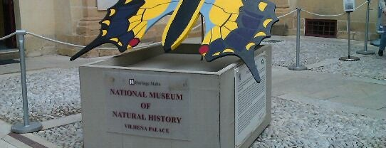 National Museum of Natural History is one of Malta Cultural Spots.