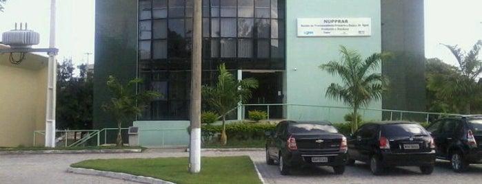 NUPPRAR - Núcleo de Processamento Primário e Reuso de Água Produzida e Resíduos is one of UFRN.