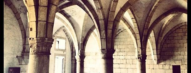 Mosteiro de Alcobaça is one of Tania.