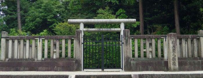 仲恭天皇 九條陵 is one of 天皇陵.