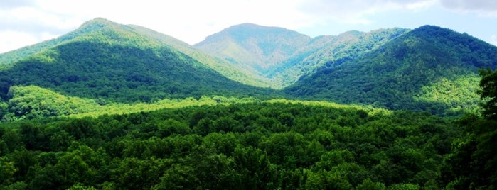 Great Smoky Mountains National Park is one of road trip u.s.a..