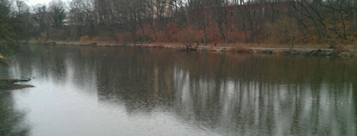 "Clove Lakes Park is one of ""Be Robin Hood #121212 Concert"" @ New York!."