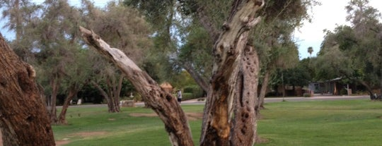 Los Olivos Park is one of PHX Parks in The Valley.