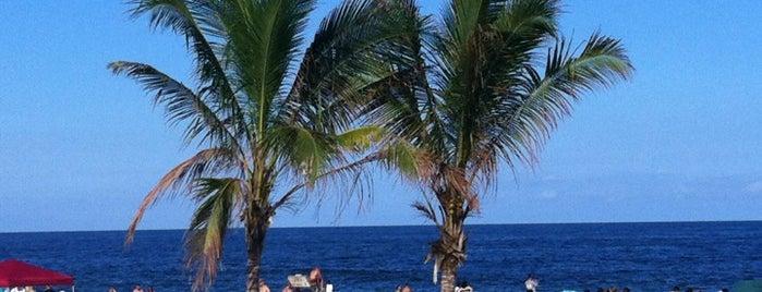 Jersey shore for 1209 ocean terrace nj