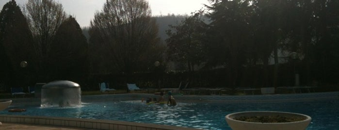 Montegrotto Terme is one of Italy 2011.