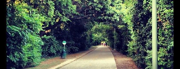 Katy Trail is one of WERK Out.