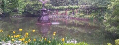 雲形池 is one of 公園.