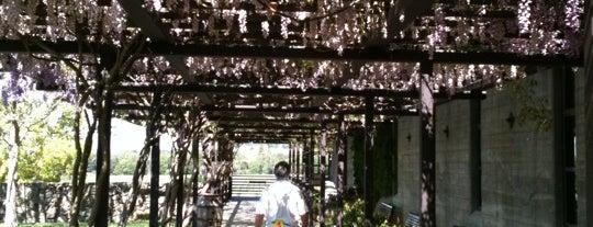 @StrykerSonoma is one of Wine Road Picnicking- al Fresco Perfetto!.