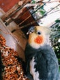 Фото пользователей 12 с foursquare.com