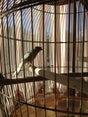 Фото пользователей 13 с foursquare.com