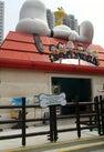 Snoopy's World...