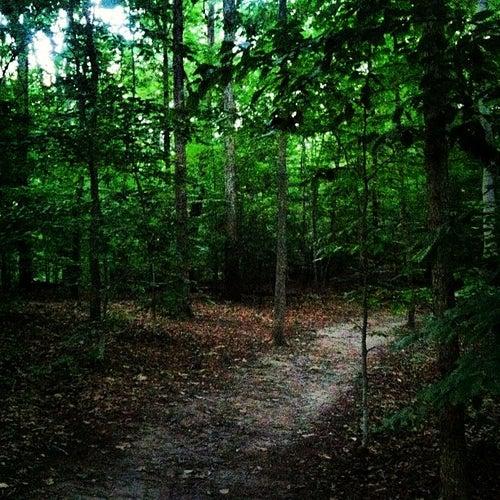 Rock Creek Running Trail