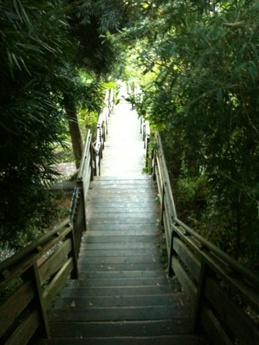 Filbert Steps