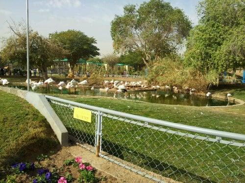 Riyadh Zoo | حديقة الحيوان