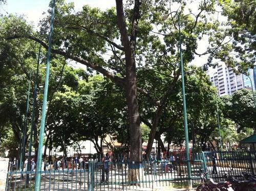Plaza La Candelaria