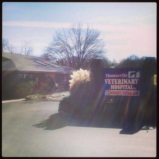 Thomasville Veterinary Hospital,animal,animal hospital,boarding,cats,dogs,grooming,vet