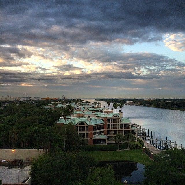 Westin Tampa Harbour Island,a-list,hotel,hotel bar,logotv,pool